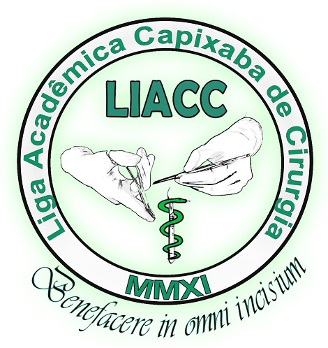LOGOMARCA - LIACC