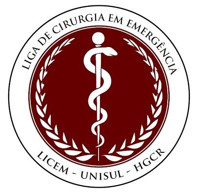 LOGOMARCA LICEM-UNISUL